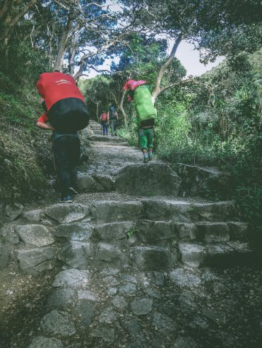 Porters climb the many steps of the inca trail