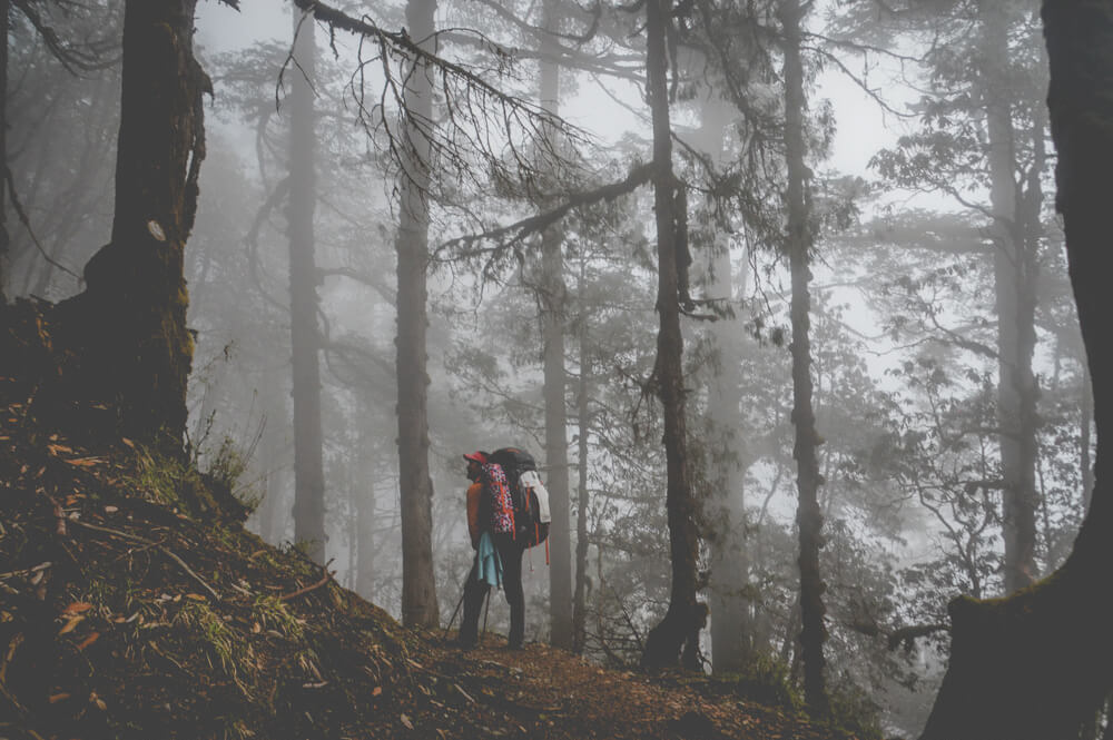 Langtang Trek Photo