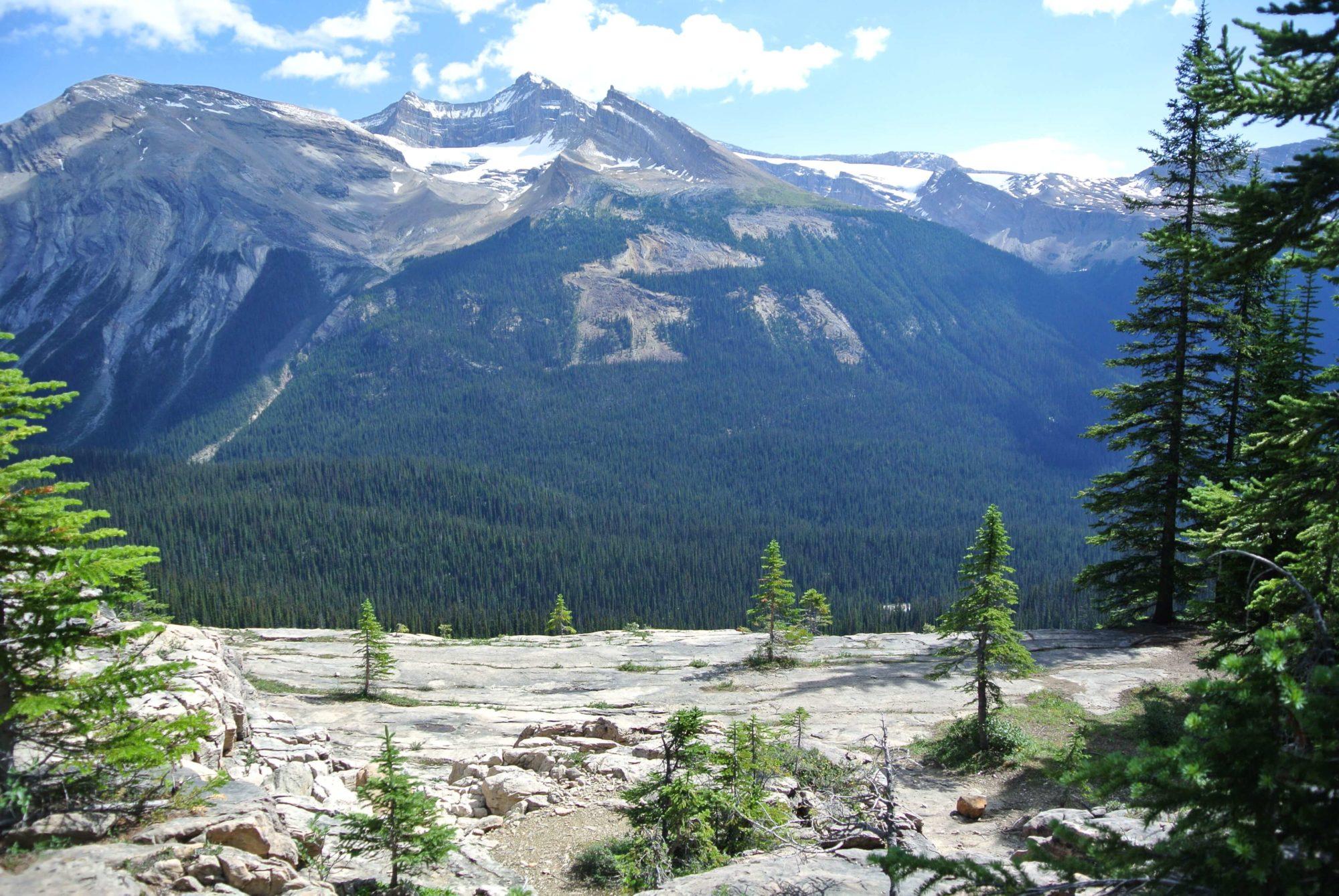 banff hiking trails the iceline trail