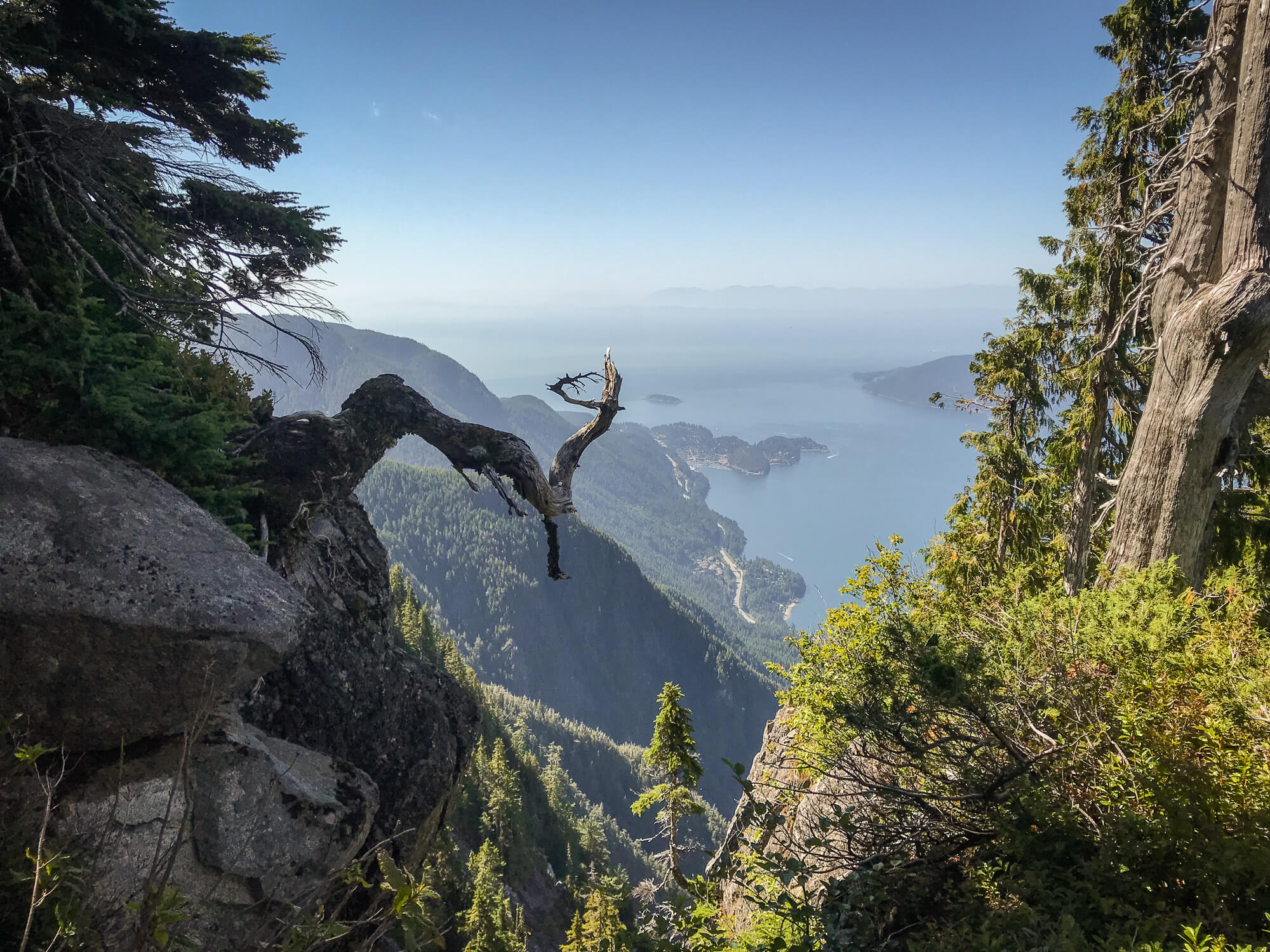 View from St Marks Summit near Cypress Mountain