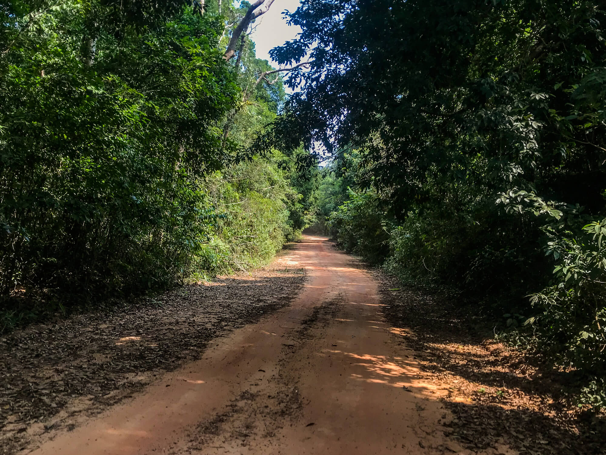 Exploring the red dirt roads on Phu Quoc island is one of the best things to do