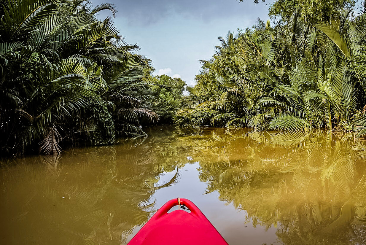 Kayaking the green cathedral in Kampot